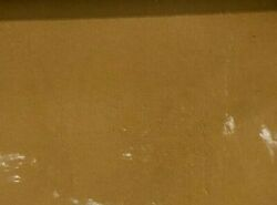 C1899 Antique Cat Kittens Signed Oil Painting Kitten Cats Portrait Expressionism