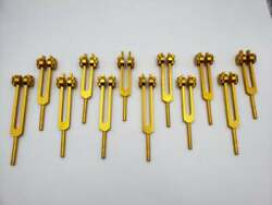 Gold Color Song Of The Spine Tuning Fork 12 Set For Toning The Vertebrae