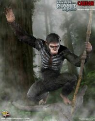 Pop Culture Shock Pcs Dawn Of The Planet Of The Apes - Caesar Ex 1/4th Statue