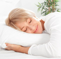 Natural Comfort Silk Filled Deluxe Pillow Queen Size Customer Return Clearance