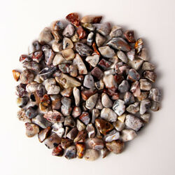 1 Lb Tumbled Colorful Crazy Lace Agate Gemstone Crystals 130-150 Stone Specimens