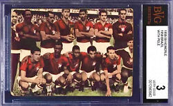 1958-59 Heinerle Pele Rc Hof And Brazil Team Bvg 3 Complete Front And Back Rare