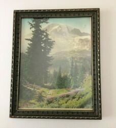 Mt Rainier The Trail To Paradise Norman Edson Signed Paper Print Of Photo