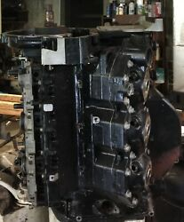 Evinrude Ficht 175hp- Powerhead Long Block And Midsection With Engine Stand