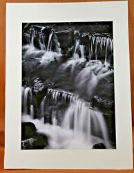 Ansel Adams Signed Fern Spring Dusk Photograph + Images 1923-1974 138 Of 500