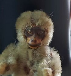 Antique Shuco Mohair Monkey Yes No Monkey Jointed 2 1/4