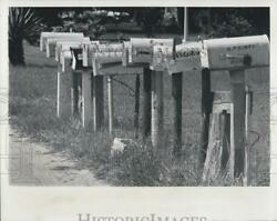 1976 Press Photo Line Of Mailboxes In Front Of Rural Homes Anclote - Rsg32065
