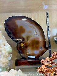 Agate Crystal Dogtooth Home Decor Wall Display Pirate Gold Coins Minerals
