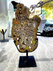 Agate Crystal Home Decor Wall Display Pirate Gold Coins Minerals Rock