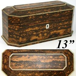 Antique Victorian Era 13 Coromandel And Mother Of Pearl Tea Caddy, Jewelry Chest
