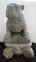 Stoic Large English Bulldog Statue