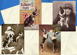 BOSTON TERRIER PACK OF 4 VINTAGE STYLE DOG PRINT GREETINGS NOTE CARDS #3
