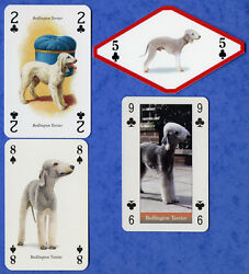 Bedlington Terrier Mix Of Dog Playing Swap Single Cards Great Gift When framed