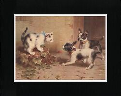 BOSTON TERRIER DOGS AND CAT LOVELY VINTAGE STYLE DOG ART PRINT READY MATTED