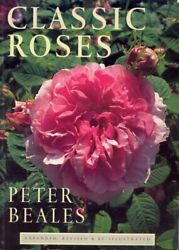 Classic Roses By Beales Peter Book The Fast Free Shipping