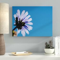 Ebern Designs 'Meditation and Calming (1)' Photographic Print on Canvas