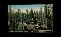 Oneonta NY ca1908 unused postcard Farming Family w Kids HOP PICKING sorting J8