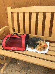 PERFECT PETZ SILKY YORKIE TERRIER PUPPY LIFE LIKE BREATHING DOG CARRIER