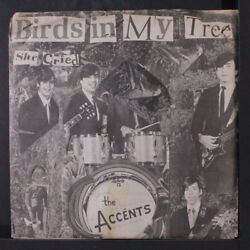 ACCENTS : Birds In My Tree  She Cried 45 (Rhode Island staples through top o
