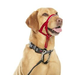 Halti Dog Headcollar Stops Pulling Kindly Training Comfortable Red Sizes 1 2 3 4