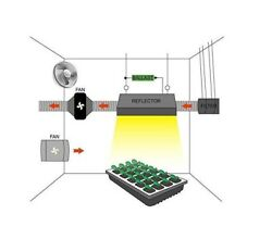Complete Indoor Greenhouse LED Hydroponics Grow Kit  WiFi Camera FREE SHIPPING
