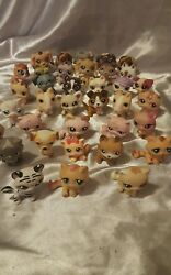 Littlest pet shop lot of 36 cats dogs rare  with numbers # C-pit bull poodle