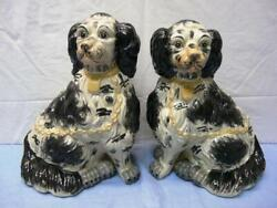 2 Beautiful large Antique English Cocker Spaniel Dogs 13