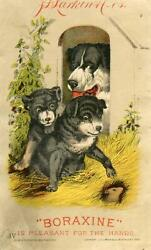 1882 Boraxinepleasant For Handsdog Puppies Mouselarkinclay And Richmond Litho