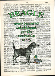 Beagle Hound Dog Traits Altered Art Decor Print Upcycled Vintage Dictionary Page