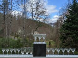 Set 20 Blown Glass Crystal Stemware W/etched Leaves Martini Water Cordial Wine