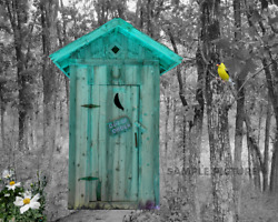 Outhouse Teal Finch Bathroom Home Decor Grey And Blue Photo Picture 8x10 No Frame