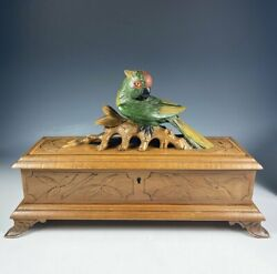 Antique Hc Black Forest 12.5 Glove Or Jewelry Box, Casket, Rare Painted Parrot