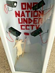 Original Street Art Sculpture Taxidermy Tribute To Banksy One Nation