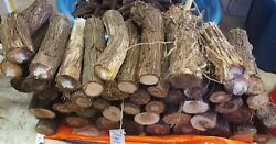 10-12 Grapevine Wood Logs Smoking Grilling Bbq Fire Carve 11-14lbs Dawn Morning