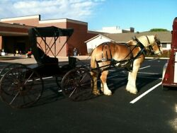 Horse Driving Carriage Combined Driving Harness Racing Horse-drawn Vehicle