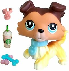 lps Collie #58 Tan Brown Collie with Blue Eyes Paw Rise up with Accessories