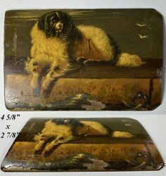Superb Petit Antique French Oil Painting On Board, Portrait King Charles Spaniel