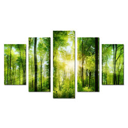 Green Trees Forest Landscape Wall Art Picture Home Decor Canvas Print Painting 5