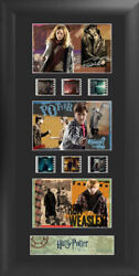 Harry Potter The Deathly Hallows S2 Trio 11 X 20 Film Cell Limited Edition Coa