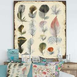 Designart And039old Style Feathers Catalogueand039 Cottage Canvas Wall