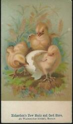 Richardson#x27;s Music and Card Store Boston Baby Chicks Victorian Trade Card