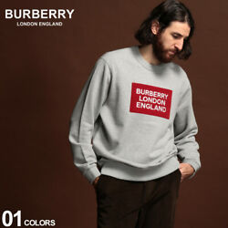 Sweat Mens Trainer Pile Logo Pullover Brand Tops Bb8021431