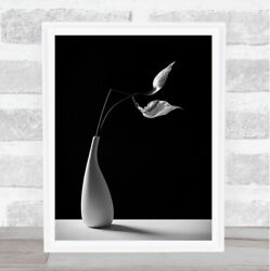 Passionately Dark Vase Flower Flowers Orchid Orchids Wall Art Print