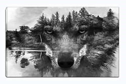 Wolf Canvas Wall Art Animal Paintings Picture Black And White Prints Artwork To