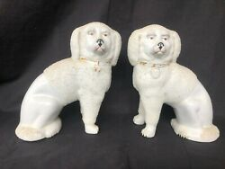 Antique Pair Of Staffordshire Confetti Poodle Dogs