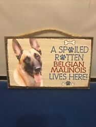 """A Spoiled Rotten Belgian Malinois Lives here Dog Sign 5quot;x 8"""" NEW Plaque 109"""