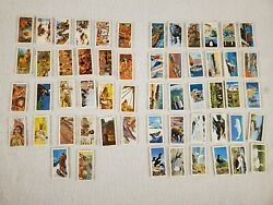 56 Brooke Bond Foods Limited Red Rose Collector Cards Series 16 And 17