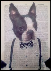 Boston Terrier Print Vintage Dictionary Page Wall Art Picture Hipster Dog