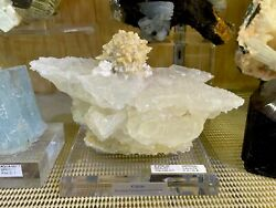 Imperial Calcite Crystal Home Decor Wall Display Pirate Gold Coins Minerals