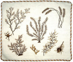 20 X 24 Handmade Wool Needlepoint Petit Point Seaweeds Pillow With Cording